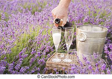 sur, champagne, field., lavande, délicieux