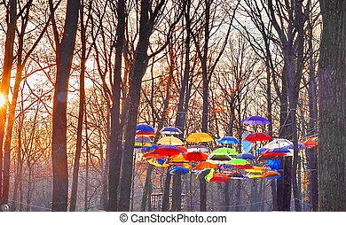 sur, ciel, parapluies, multicolore