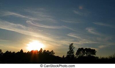 sur, coucher soleil, forêt