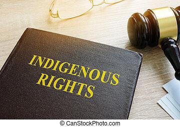 sur, droits, indigène, livre, droit & loi, gavel.