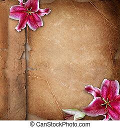 sur, fleurs, papier, vieux, couverture album, photo, printemps, cadre