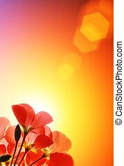 sur, fleurs, soleil, arrière-plan rouge