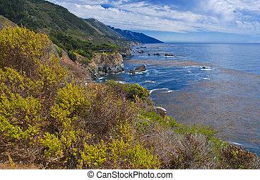 sur grande, litoral, califórnia