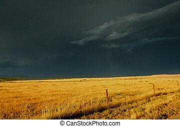 sur, inquiétant, prairie, orage