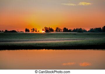 sur, matin, petit, brumeux, aube, rivière