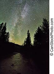 sur, pin, sombre, forêt, manière, laiteux, rivière, galaxie