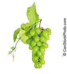 sur, raisin, groupe, blanc