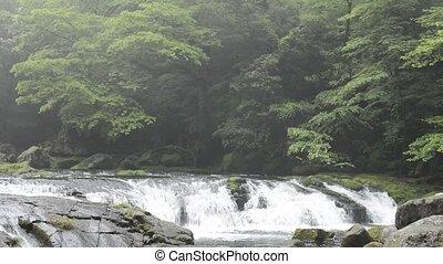 sur, rivière, étape, rocher