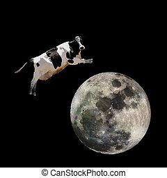 sur, sauter, vache, lune