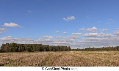 sur, tracteur, field., nuages, timelapse