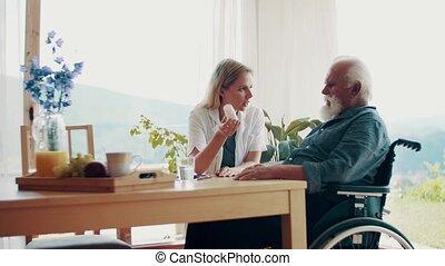 sur, visiteur, fauteuil roulant, conversation, santé, maison, personne agee, medication., homme