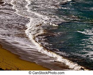 Surf Ashore