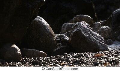 Surf backlit - Dashing ashore sea waves backlit