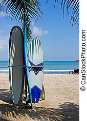 Surf boards - Several surf boards standing on the beach
