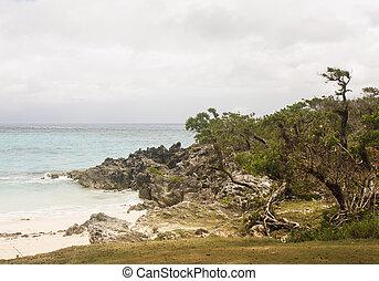 Surf on Rocky Shore in Bermuda