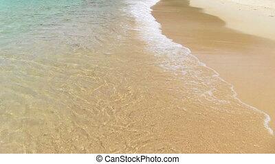 Surf on the tropical beach