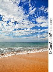 surf, spiaggia, -, paesaggio, verticale