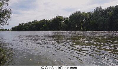 surface, baissé, il, feuilles, rivière, avoir
