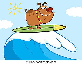 surfando, cão, feliz