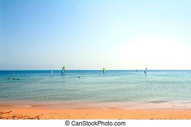 surfando, praia, paisagem