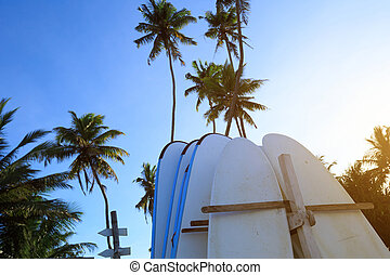 surfboard and coconut trees under blue sky