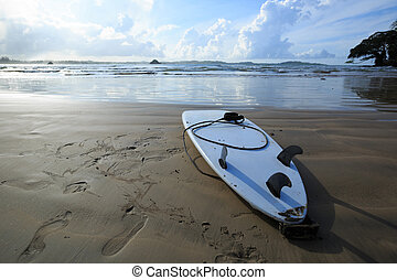 surfboard on beach ready for surfing