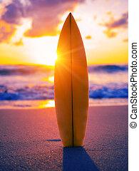surfboard, spiaggia, a, tramonto