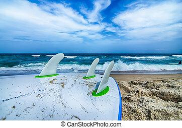 surfbrett, und, flossen, erwarten, erhalten, in, ozeanwasser
