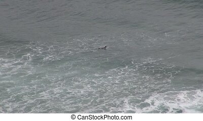 surfer 30 - surfer at beach in Asturias Spain Europe
