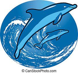 surfer, dauphins