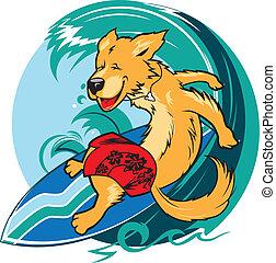 Happy golden retriever surfing a big wave