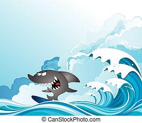 surfer, komisk, haj