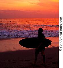 Surfer surfing ocean silhouette beach