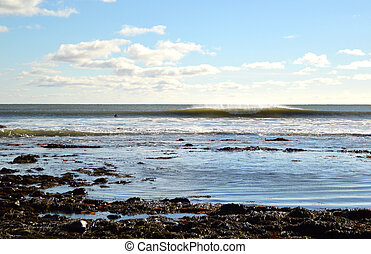 surfer waiting in the water looking at a left and right breaking wave on a sunny afternoon in Nova Scotia Canada