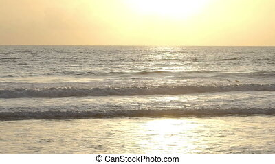 Surfer waiting wave in ocean at sunset Bali Indonesia
