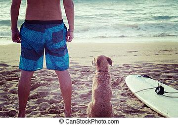 surfeur, planche surf, chien