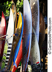 Surfing boards - Several surf boards standing on the beach