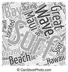 surfing, in, hawaii, woord, wolk, concept