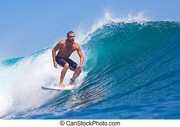 surfing, surf, ghiandola, indonesia., wave., area.