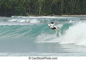surfista, ligado, tropicais, onda, indonésia
