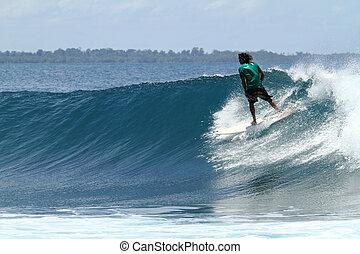 surfista, montando, rapidamente, ligado, tropicais, onda azul