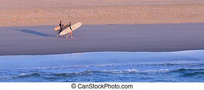 surfistas, em, paraíso surfistas, queensland, austrália