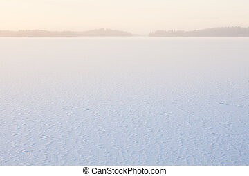 surgelé, matin, vue, hiver, lac