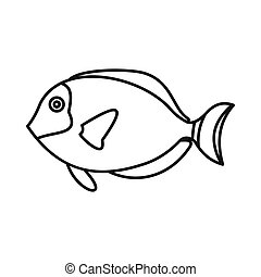 Surgeon fish icon, outline style