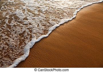 surging, plage sable, vague