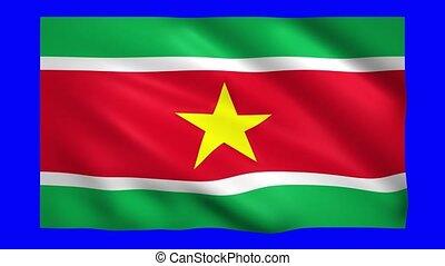 Suriname flag on green screen for chroma key