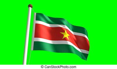 Surinamese flag