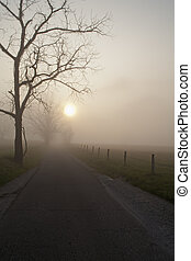 Surise, Cades Cove, Smoky Mtns - Sunrise, Cades Cove, Great...