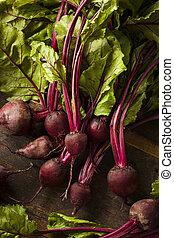 surowy, organiczny, czerwony, buraki