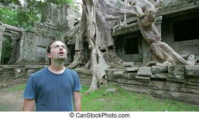 surprise, bizarre, touriste, nature